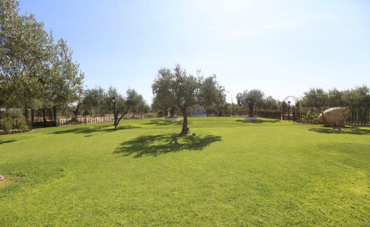 Ideas para celebrar tu boda en Sevilla